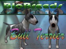 BioBreeds (BB) Dog FEMALE Bull Terrier (BullT) STARTER (Boxed)