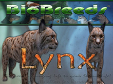 BioBreeds (BB) Wild Ones MALE Lynx STARTER (Boxed)