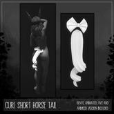 [TJR] Short Horse Tail [Curl]