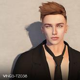 WINGS-HAIR-TZ0224 Gray (Pack)