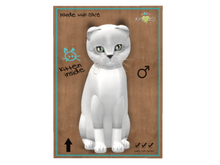 KittyCatS Box - Foxie - Snow - 9T - M