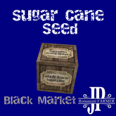 Sugar cane seeds [G&S]