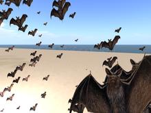 Bat in land