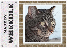 =W= Kitty - art