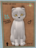 KittyCatS Box - FS001