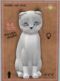 KittyCatS Box - FS004