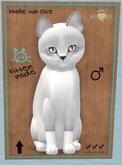 KittyCatS Box - FS015