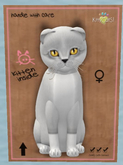 KittyCatS Box - FS020