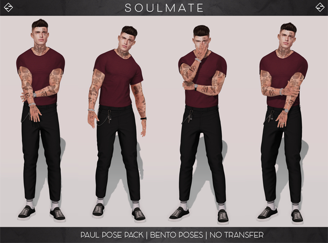 SOULMATE - Paul Pose Pack [Add/Touch]