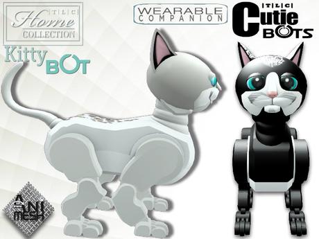 Cat,robot,companion
