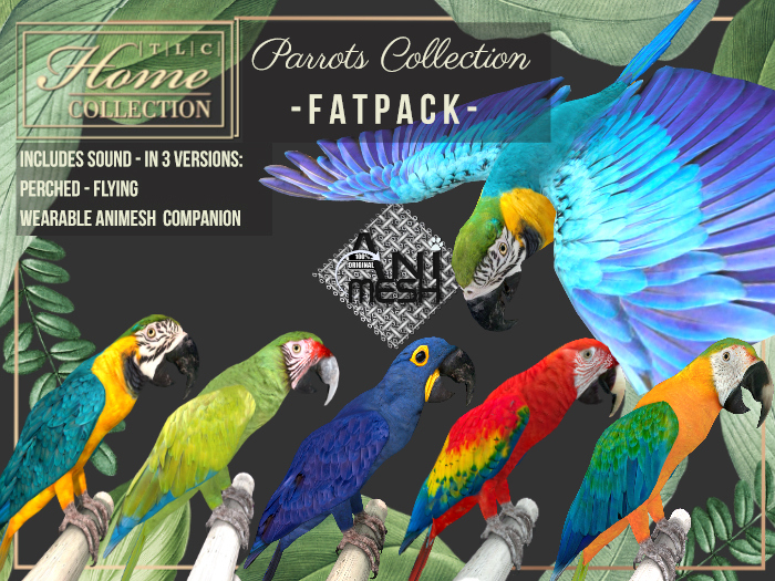 Parrot Collection, fatpack