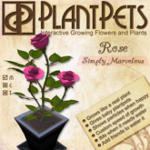 PlantPet Seed [Rose *Simply Marvelous*]