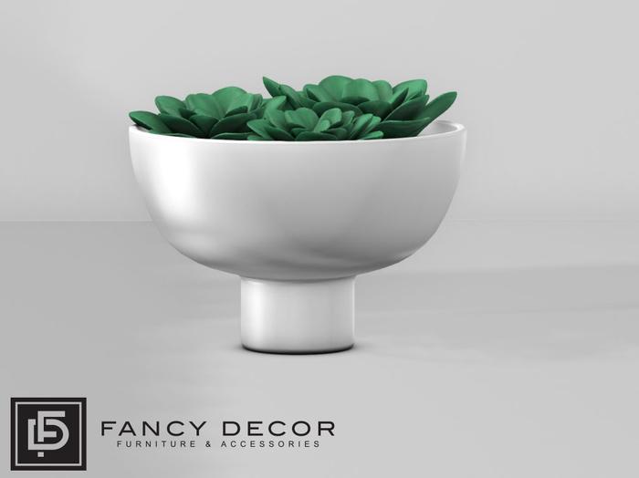 Fancy Decor: Henrik Potted Succulents
