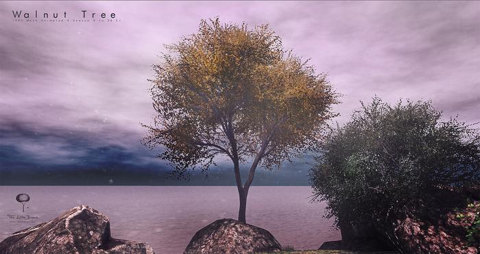 LB Walnut Tree Animated 4 Seasons