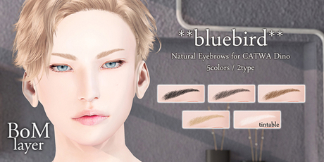 **bluebird** Natural Eyebrows for CATWA Dino [BoM only]