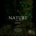 Amitie Nature Pack