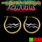::GW::Aquarius earrings