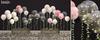 Tarte. garden balloons mp