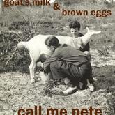 Call Me Pete Poster
