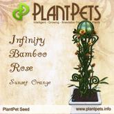 [UPDATED] PlantPet Seed [Infinity Bamboo Rose *Sunset Orange*]