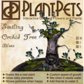 PlantPet Seed [Smiling Orchid Tree *Blues*]