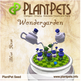 PlantPet Seed [Wondergarden *Blue Rose*]