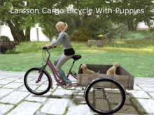 Three-Wheel Bike With Two Puppies Riding In Back!