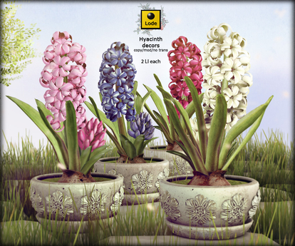 *LODE* Decor - Hyacinth [All Colors]