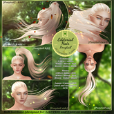 Tableau Vivant \\ Editorial hair - Ponytail RARE