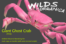[ WoO ] Giant Ghost Crab (Pink)