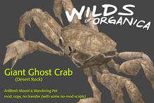 [ WoO ] Giant Ghost Crab (Desert Rock)