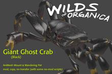 [ WoO ] Giant Ghost Crab (Black)