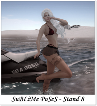 SuBLiMe PoSeS - Stand 8