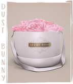dust bunny . box of roses . pink . boxed