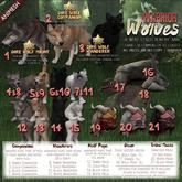 JIAN Warrior Wolves 2. Dire Wolf Companion BOX RARE