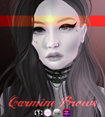 NOX. Carmine Brows [Tattoo Layers]