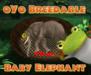 oYo Breedable Elephant Bundle: F Baby Green w/Brown WILD