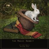 KOPFKINO - The Magic Rabbit