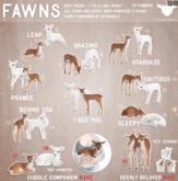 +Half-Deer+ Fawn - Sleepy (Snow)