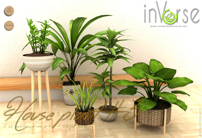 inVerse MESH - House plants set vol.3