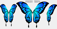 WINGS BLUE BUTTERFLY ANIMATED MESH COMPLETE