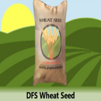 DFS Wheat Seed