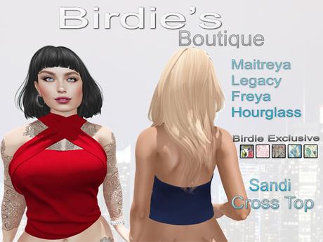 Birdie's Boutique - Sandi Crossed Top Birdie's Pack