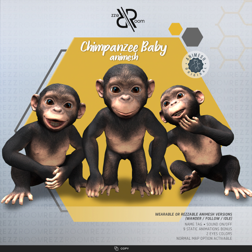 [Rezz Room] Box Chimpanzee Baby Animesh (Companion)