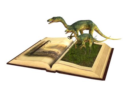 ~ xantes ~ Fairy Tale Book 11 (BOX)