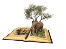 ~ xantes ~ Fairy Tale Book 08 (BOX)