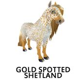 Amaretto Breedable Bundle Gold Spotted Shetland 10