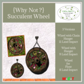 {Why Not ?} Succulent Wheel-Boxed