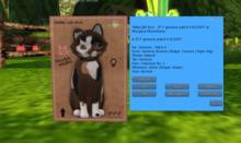 KittyCatS Box - 3T F genesis patch II FLOOFY