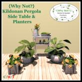 {Why Not?} Kildonan Pergola Side Table & Planters-Boxed